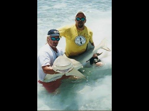 305 791 1187 Internet Marketing Solutions - Key West, FL
