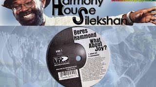WHAT ABOUT JOY ? -extended mix- (by Beres Hammond)