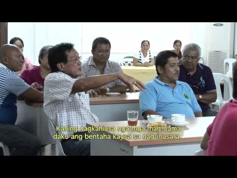 Under the Mangga tree: Empowering mango growers of Samal Island