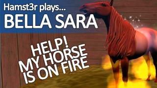 Bella Sara (1 of 4)