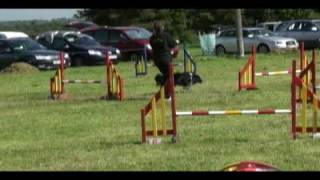 Worcester Agility Show - Bex And Rix