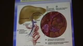 диференциальная диагностика заболевания печени