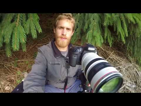 Auf Wildlife Fotojagd - Wildlife Photography (with english subtitles)