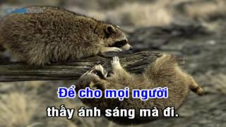[Karaoke TVCHH] 359- ĐÈN SÁNG MUỐI MẶN - Salibook
