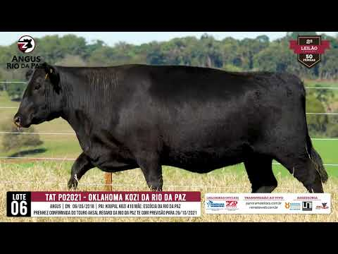 LOTE 06 PO2021 OKLAHOMA KOZI DA RIO DA PAZ - Prod. Agência e Tv El Campo