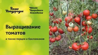 Выращивание томатов (семинар по природному земледелию)(Семинар о том, какие создать оптимальные условия для выращивания томатов, как справиться с болезнями, как..., 2015-04-29T18:41:28.000Z)