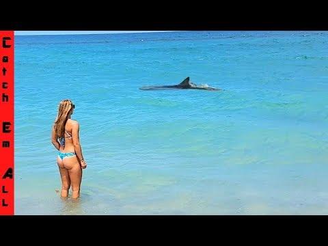 LOST SHARK in our SECRET BEACH FISHING SPOT!