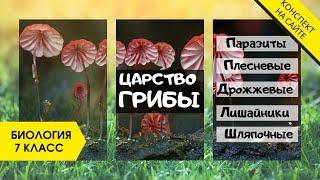 Царство Грибы. Растения или животные? Строение гриба. Плесень, Паразиты, Лишайники. Биология 7 класс