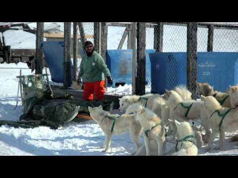 Climate Change impacts in Greenland, Stakeholder interveiws Ilulissat (Dansk)