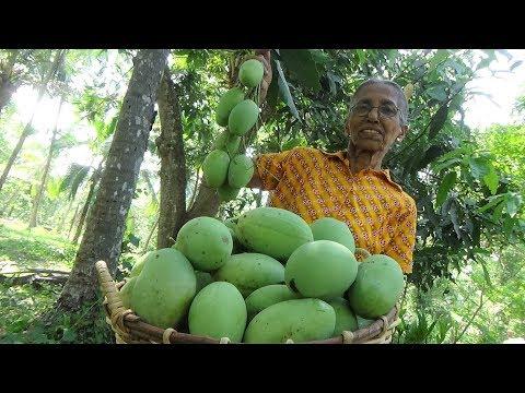 Mango Chutney Recipe By Grandma ❤ Village Life