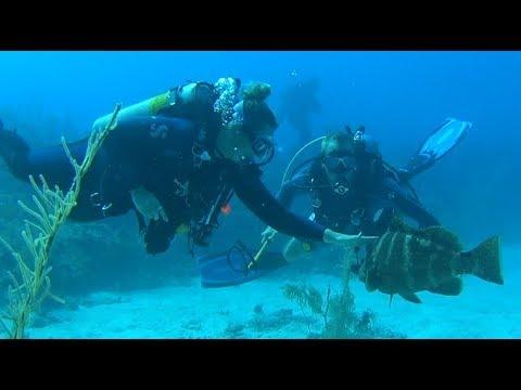 Cayman Brac Tombstone 1