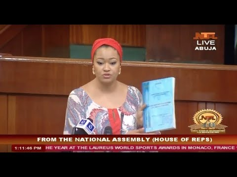 Natasha Akpoti exposes conspiracy on Ajaokuta Steel's Revival at the House of Reps Debate. thumbnail