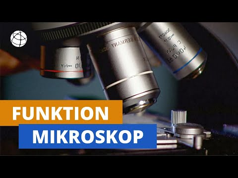 Wie ein mikroskop vergrößert winzlingen auf der spur planet