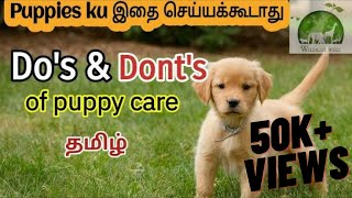 Do's and Dont's of Puppy Care tamil | Tips for puppy care | Puppy videos | puppy tips for beginners