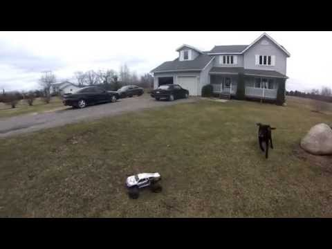 Vaterra Halix 3s Jumping Bashing Vs dirt bike and Dog