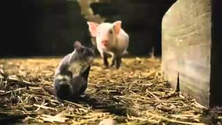 Charlotte's Web   Official Trailer! Thumb