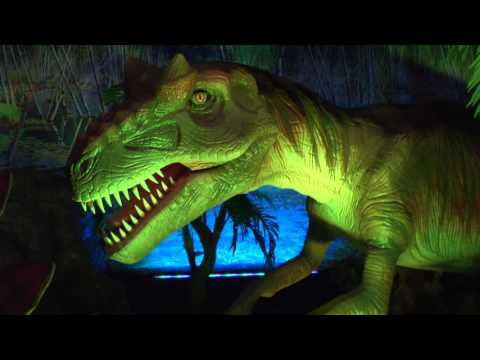 Dinosaurs Unearthed at the Academy of Natural Sciences