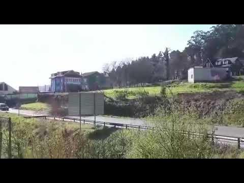 Susto en Noia: unha árbore cae e está a piques de esmagar un coche