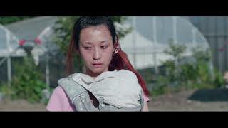 『愛の病』予告編 岡山天音 動画 11