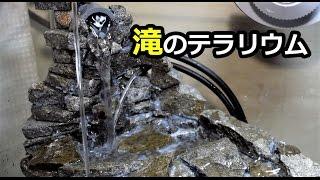 滝のアクアテラリウム立ち上げpart3 水の流れがオシッコ!?