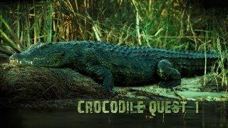 Divers face crocodiles & claustrophobia: Croc Quest Ep 1