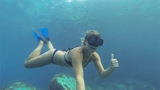 Swimming with Turtles in the Caribbean - Sailing Inspire Ep 25