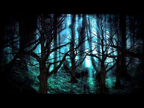 background dark forest youtube