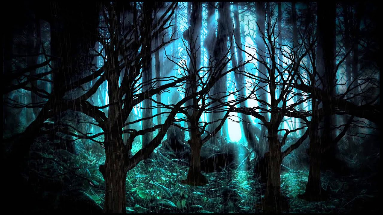Background Dark Forest - YouTube - photo#45