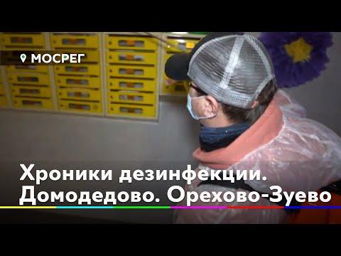 Коронавирус: хроники дезинфекции. Домодедово. Орехово-Зуево