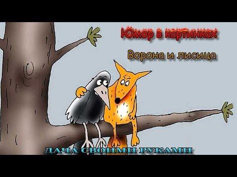 Юмор в картинках. Ворона и лисица. Фото приколы. Карикатуры.