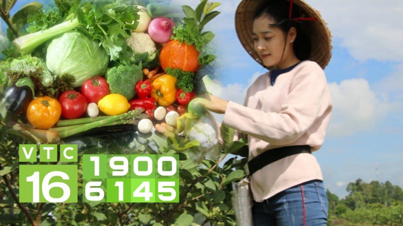 Thị trường rau quả thế giới: Cung không đủ cầu | VTC16