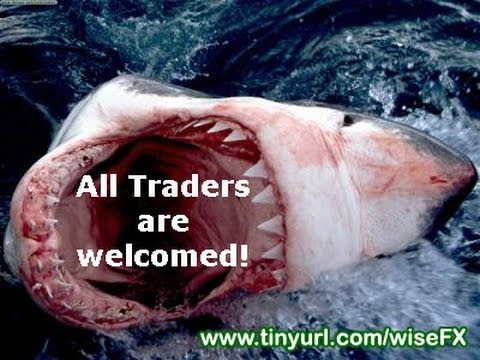 Why 95% of Forex Traders Lose Money! (COMPLETE VIDEO)