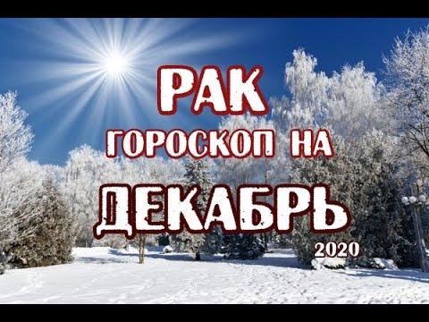 Рак. Гороскоп на декабрь 2020. Таро Магических Собак.