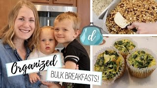 You HAVE to try these Make-Ahead Breakfast Ideas! 🍽  Egg Cups & No-Bake Cereal Bars