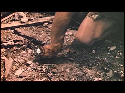 US Marines dig up and remove Japanese bombs and mines in Guam, Mariana Islands du...HD Stock Footage
