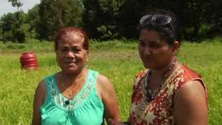 11/08/13 Growing Rice in Vermont: New Farms for New Americans on Across The Fence