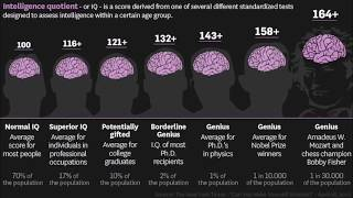 Online IQ tests. What are the realities?