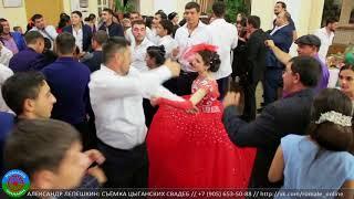 свадьба Миши и Самиры