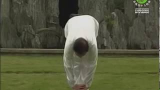 DEMONSTRAÇÃO - Sequência completa do Lian Gong em 18 Terapias Anterior