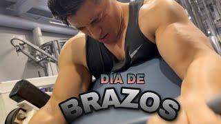 Ejercicios BÁSICOS para Brazos GRANDES/ Entrenando con SHIMOK 5%