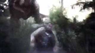 T-Rex vs Spinosaurus T-Rex wins