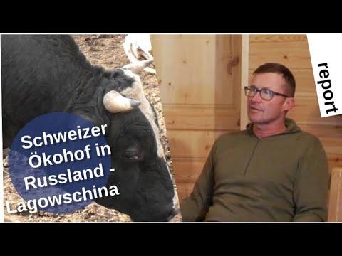 Schweizer Ökohof in Russland: Lagowschina
