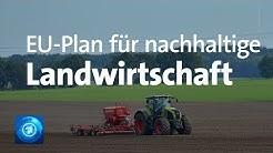 Pläne der EU-Kommission für eine nachhaltige Landwirtschaft