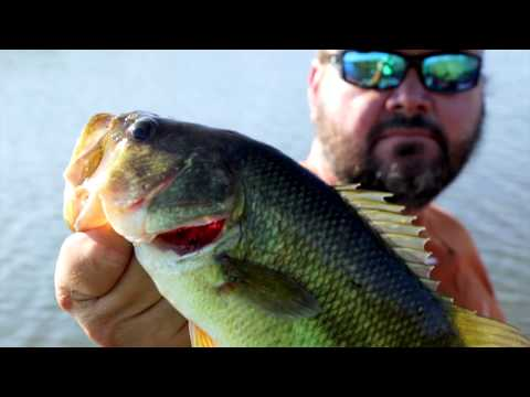Back to the Jungle - Louisiana - Sportsman TV - Full Episode