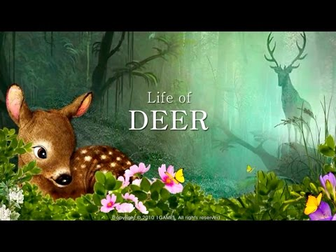Life Of Deer - By 1Games - Adventure - iTunes/Google Play(Super HD Quality)