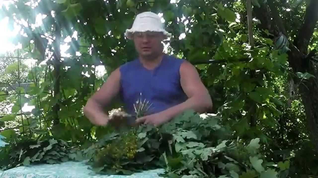 В СПб снесли Удельные бани для совладелицы Афганвета - YouTube