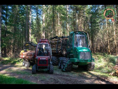 Low Impact Logging