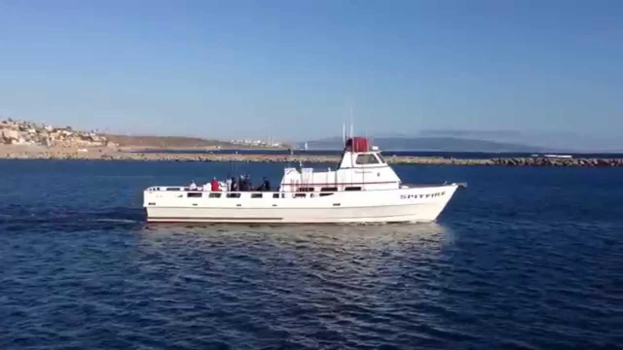 Spitfire fishing boat in marina del rey ca youtube for Marina del rey fishing report