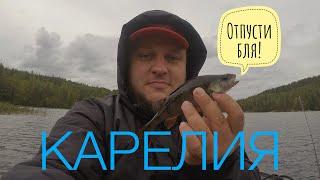 Отдых в Карелии: Дом на воде, рыбалка, покатушки на катере, грибы
