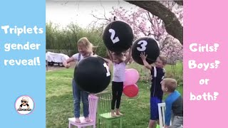 TRIPLETS BABY GENDER REVEAL COMPILATION / UNIQUE PREGNANCY GENDER VINES